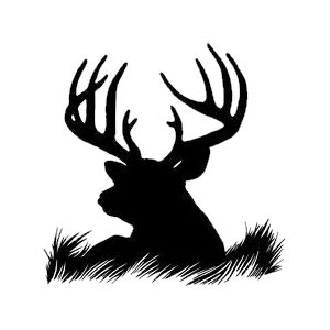 https://metalco.biz/wp-content/uploads/2020/09/animals-17.jpg