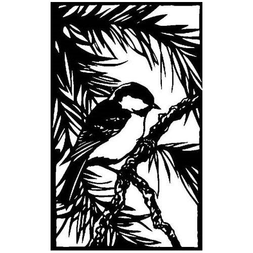 https://metalco.biz/wp-content/uploads/2020/09/birds-13.jpg