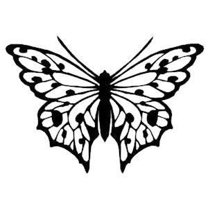 https://metalco.biz/wp-content/uploads/2020/09/insects-5.jpg